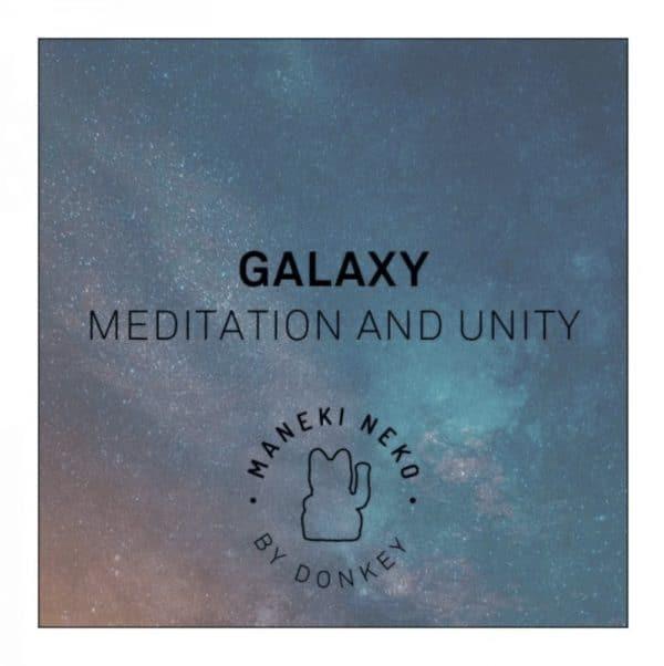 Lucky Cat Galaxy Donkey