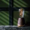 Humble lamp