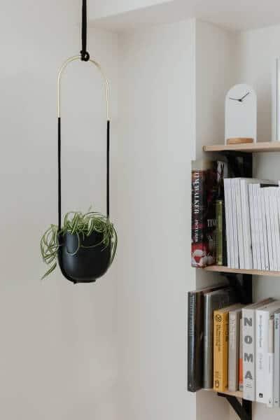 Umbra Bolo plantpot hangend