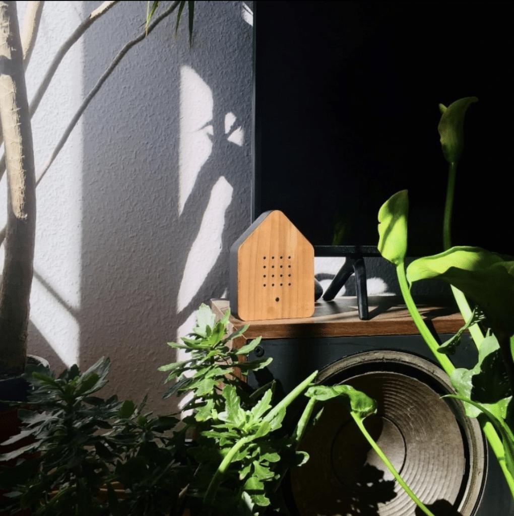 Biophilic Design Blog Zwitscherbox En Birdybox